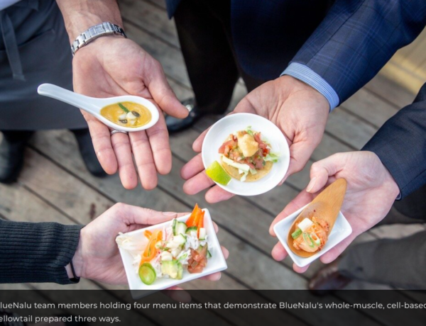 BlueNalu says its lab-processed fish could be on a plate in US restaurants later in 2021